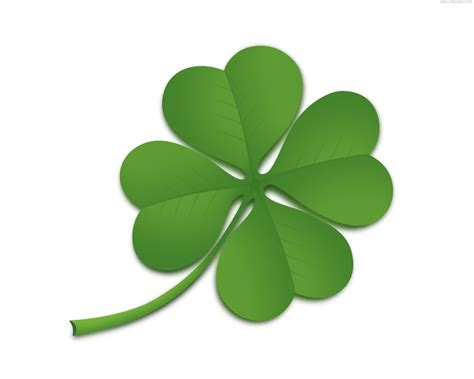 clover picture 15