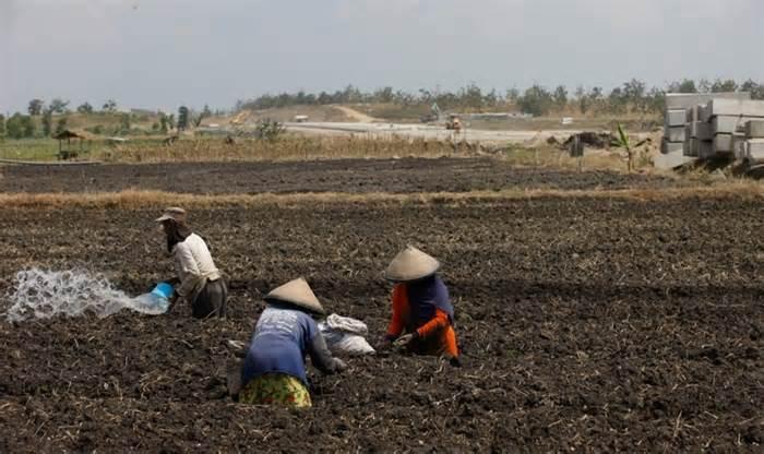 Pemprov Babel-Korsel Jajaki Hilirisasi Produk Pertanian