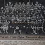 1930 All-Ireland Senior Hurling Championship