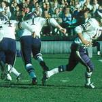 1962 Minnesota Vikings season