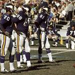 1971 Minnesota Vikings season