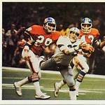 1978–79 NFL playoffs
