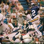 1987 Minnesota Vikings season