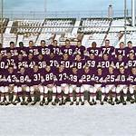 1988 Minnesota Vikings season