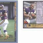 1999 Minnesota Vikings season