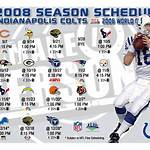 2008 Indianapolis Colts season