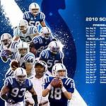2010 Indianapolis Colts season