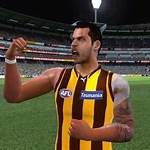 AFL (video game series)