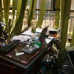April 2010 Baghdad bombings