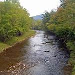 Beaverkill