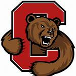 Cornell Big Red football