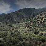Dick Smith Wilderness
