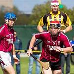 Gaelic games in North America