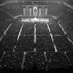 German American Bund