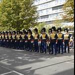Grenadiers' and Rifles Guard Regiment