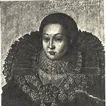 Henry VIII, Count of Waldeck