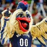 History of the New Orleans Pelicans
