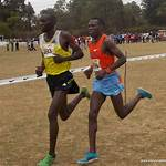 Kenyan Cross Country Championships