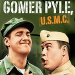 List of Gomer Pyle, U.S.M.C. characters