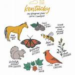 List of Kentucky state symbols