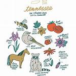 List of Tennessee state symbols