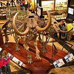 List of museums in Michigan