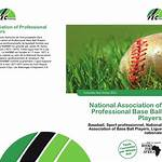 National Association of Professional Base Ball Players