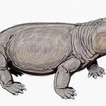 Neotherapsida