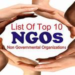 Non-governmental organization
