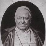 Pope Pius IX and the United States
