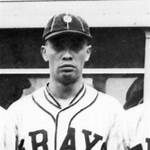 Ray Brown (Negro leagues pitcher)