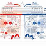Right-wing politics