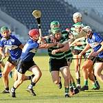 Sarsfields GAA (County Cork)