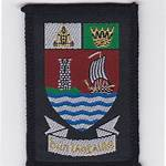 Scout Association of Ireland