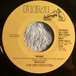 Shine (Waylon Jennings song)