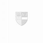 Surrey County Football Association