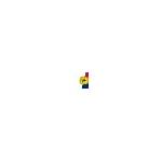 Tennessee Marriage Protection Amendment