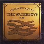 The Secret Life of the Waterboys 81–85