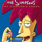 The Simpsons (season 17)