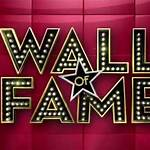 Wall of Fame (game show)