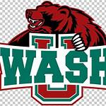 Washington University Bears football