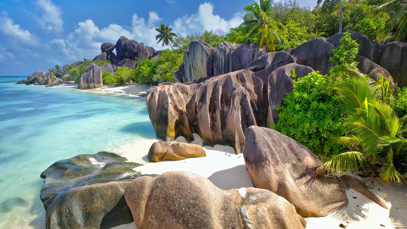 Palm trees over Maho Bay, Virgin Islands National Park (© Shutterstock)(Bing Australia)