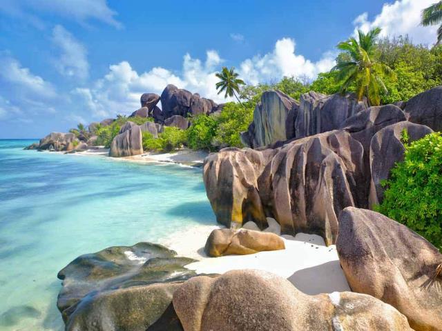 Aldabra of the Seychelles in the Indian Ocean (© Wil Meinderts/Minden Pictures)