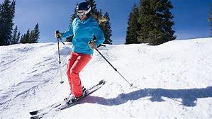 Image result for skier images