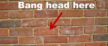 Image result for images of banging head against brick wall