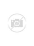 Image result for ERCIM logo