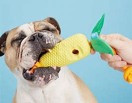 Image result for Corn Cob Dog Toys