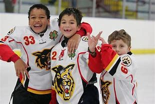 Image result for images of little kids playing hockey