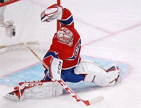 Image result for carey price funny images