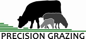 Image result for precision grazing